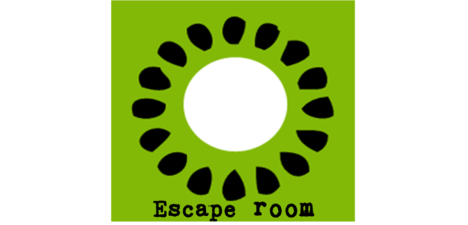 Kiwi Escape Room